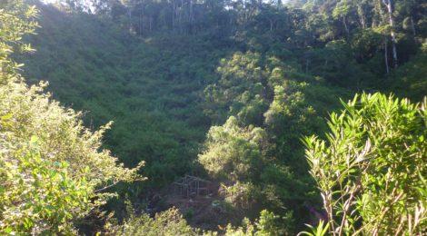 Acquistata nuova terra a Sahamampahy